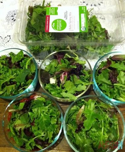 salad prep glass bowls