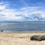 Penyu Bertelur di Pantai Ujung Genteng, Sukabumi - inLoveIndonesia.com