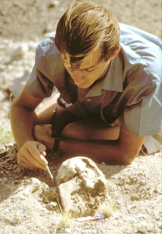 In this photograph from 1968, Richard Leakey is examining a skull found at Allia Bay in the Turkana Basin region of Kenya.