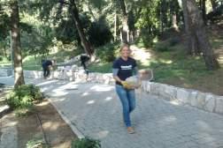 timberland korporativno volontiranje Bonsai