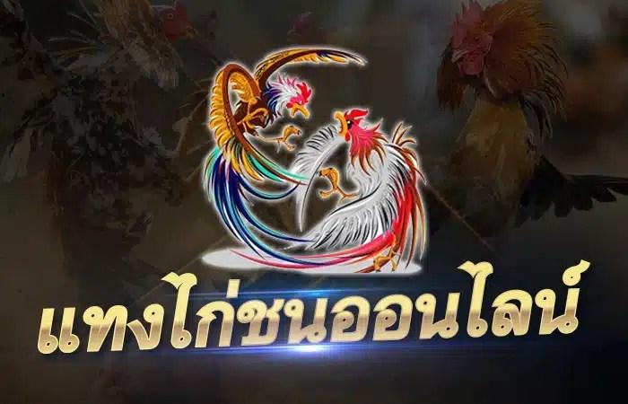 เว็บไก่ชนไทย