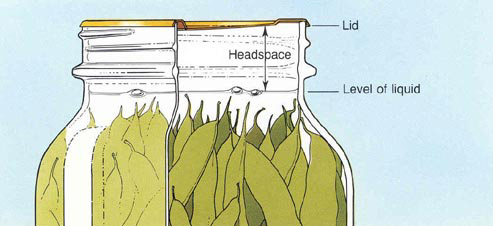 Illustration of headspace.