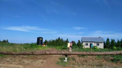 farm13