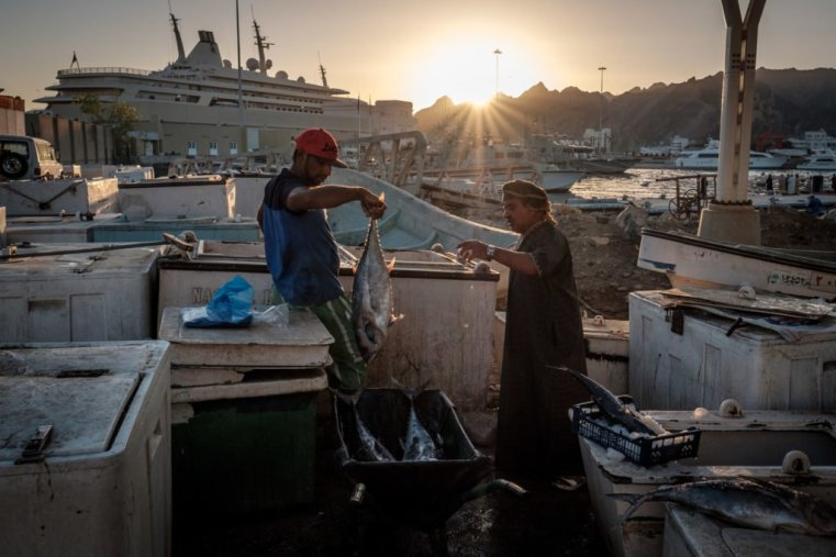 Muttrah Fish Market, Oman
