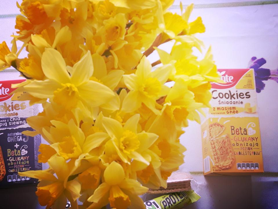 Konkurs: Słodycze funkcyjne – superfoods w zwykłych ciasteczkach i batonach proteinowych Sante