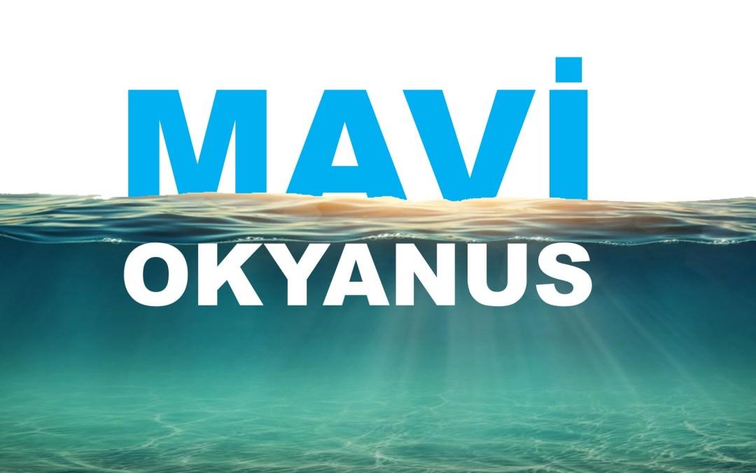 Mavi Okyanus'a Giden 6 Yol