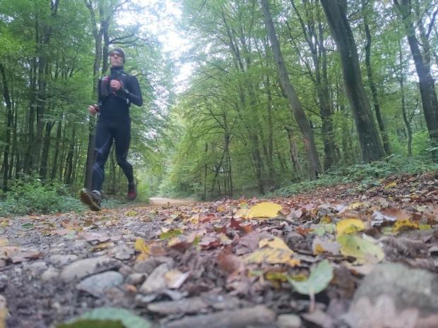 Trail Running over Autumn Leaves