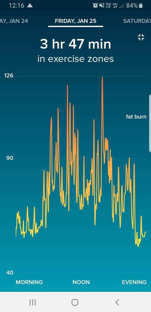 Fitbit App HR Data Overview for Single Day, Full Screen View