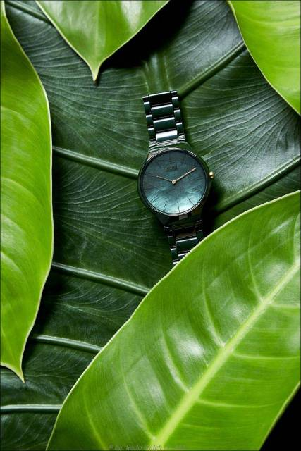 Rado True Thinline Nature Blätter Ref. 420.0006.3.091