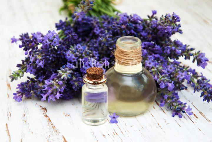 Organic Lavender Oil