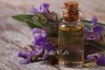 Organic Sage Oil