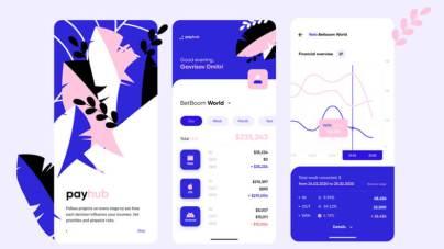 Payhub Financial App Design Freebie
