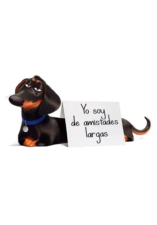 buddy-la-vida-secreta-de-las-mascotas-2-estrenos-colombia