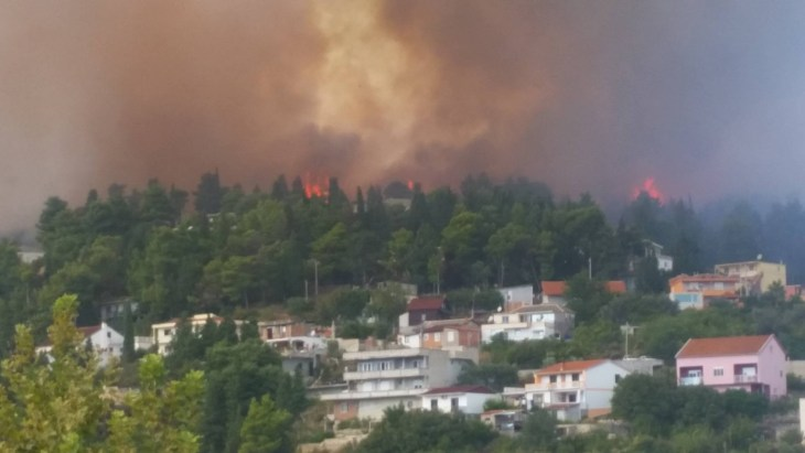 Fire in Ulqin threatens ancient olive grove