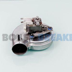 Halstead Fan 601011 GC- 41-260-05 1