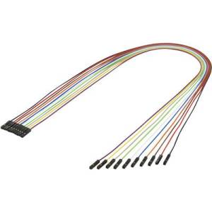 Renkforce Jumper cable Raspberry Pi, Banana Pi, Arduino [10x Wire jumper socket - 10x Wire jumper socket] 0.50 m Multi-coloured