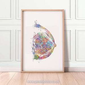 Breast Anatomy Watercolor Art Print - Mammary Gland Poster Female Reproductive System Medical As14