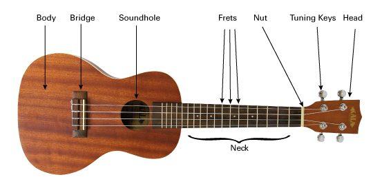 ukulele string