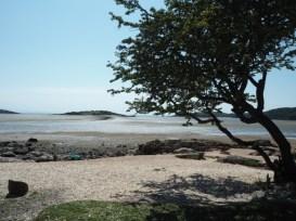 rough island kippford