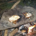 cooking fish on a rock