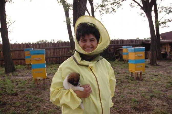 العسل الذي تنتجه أوكرانيا