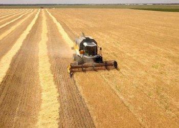المنتجات الزراعية التي تصدرها أوكرانيا