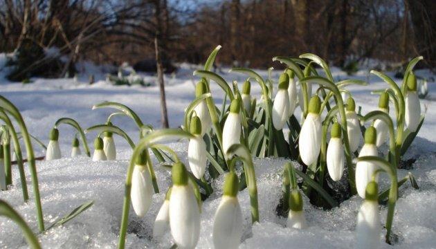وكأن الربيع لا يريد القدوم مبكرا الى اوكرانيا الثلوج تتساقط ودرجة الحرارة اقل من 7 درجات
