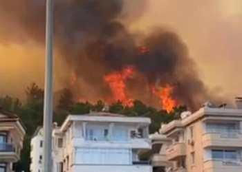 حرائق الغابات تصل إلى الفنادق وعمليات إجلاء السياح في تركيا