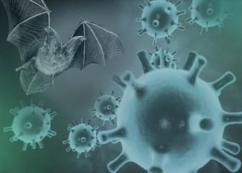 منظمة الصحة العالمية تطالب بمراقبة المختبرات في الصين