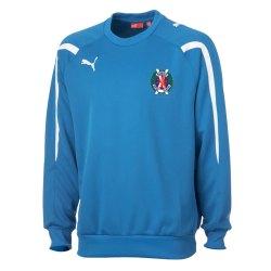 2012-13 Hawick Royal Albert Sweatshirt (Blue)
