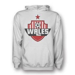Wales Country Logo Hoody (white) - Kids