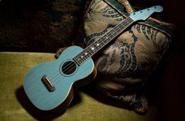 dhani harrison signature fender ukulele