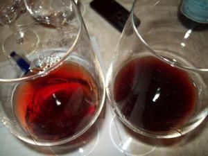cesanese18 23574043_il-vino-del-lazio-tra-passato-presente-futuro-prima-parte-9