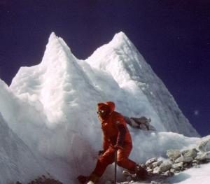 everest3 guarino