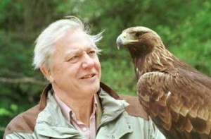 storia20 Attenborough photo