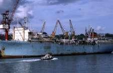 54 i morti del peschereccio russo affondato nel mare di Ochotsk