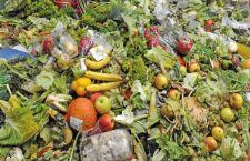 Francia: i supermercati non potranno più buttare il cibo invenduto. Tutto in beneficienza