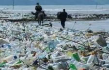 Nel 2050 ci potrebbe esserci in mare più plastica che pesci