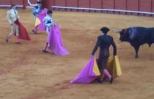 Spagna: le corride continueranno anche a Barcellona e Catalogna