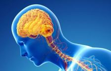 Parkinson. Costantini: con la Viamina B1 anche un grande risparmio di risorse