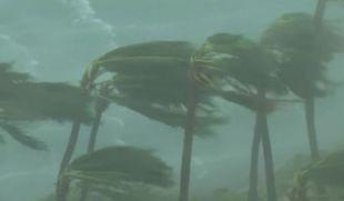 L'arrivo di Mattehw in Florida