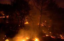 Grecia: saliti ad 80 i morti per gli incendi. Molti i dispersi