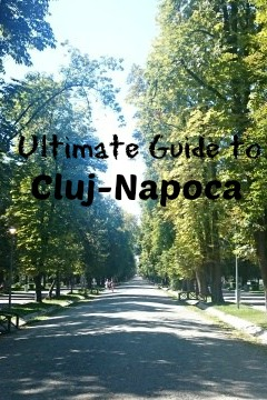 what to do in Cluj