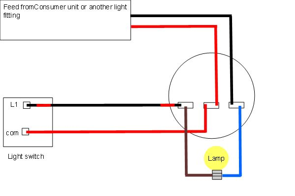 single light wire diagram for raptor 10a box mod wiring