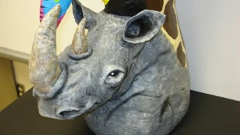 Rhino detail photo, from the side.
