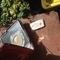 Solar Drying Moko