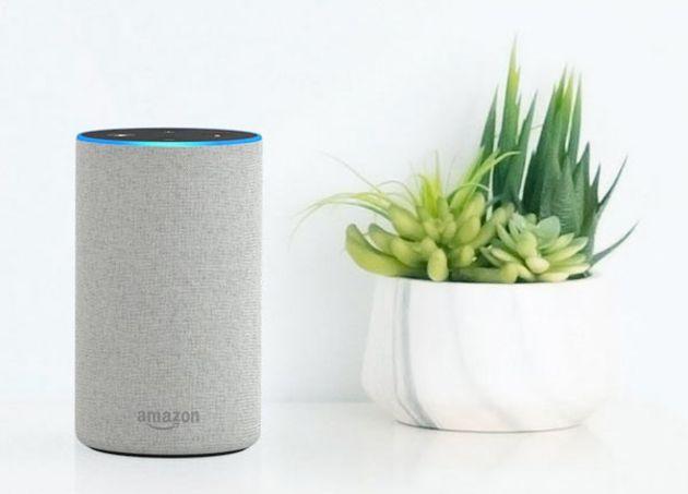 Amazon introduit de nouvelles compétences Alexa pour les professionnels