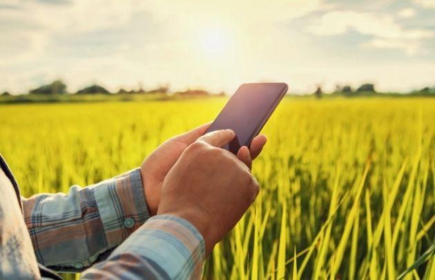 L'agtech peut-elle renforcer une chaîne d'approvisionnement alimentaire fragilisée?