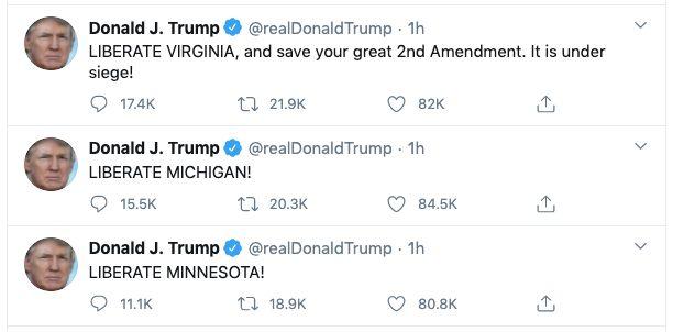 Trump appelle les habitants du Minnesota, du Michigan et de Virginie à