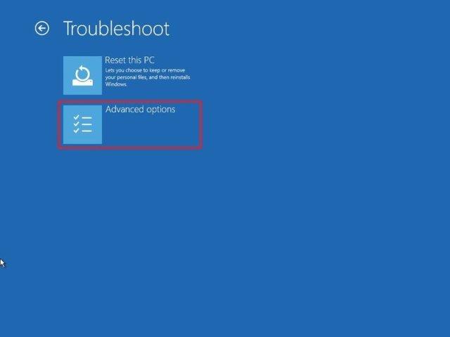 Windows 10 troubleshoot advanced option